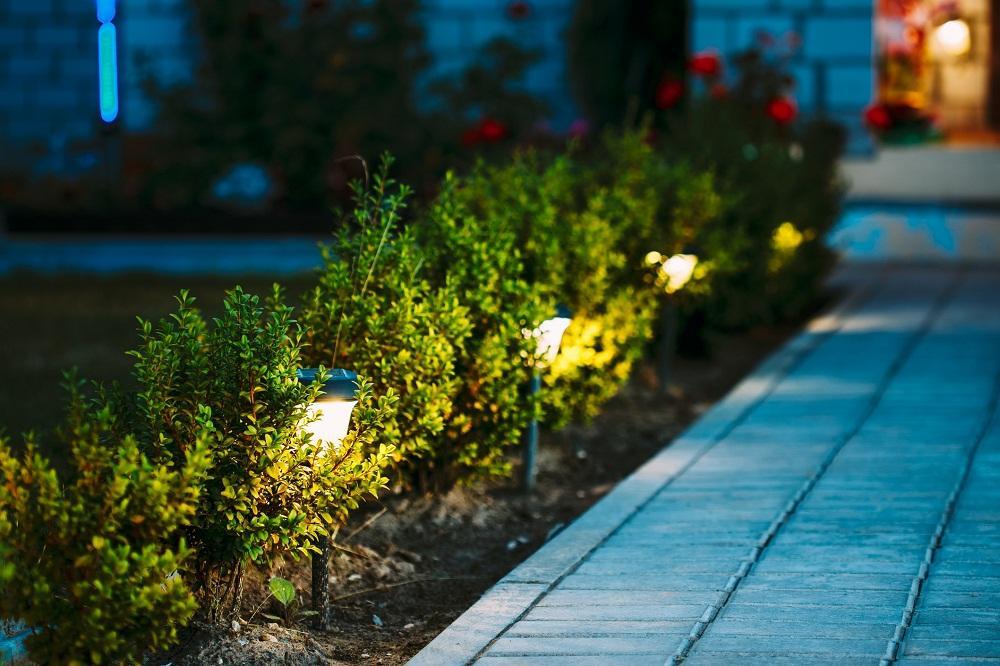 lampy w ogródku
